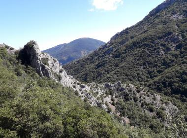 Viaggio a piedi nelle Marche: trekking nel cuore del Montefeltro